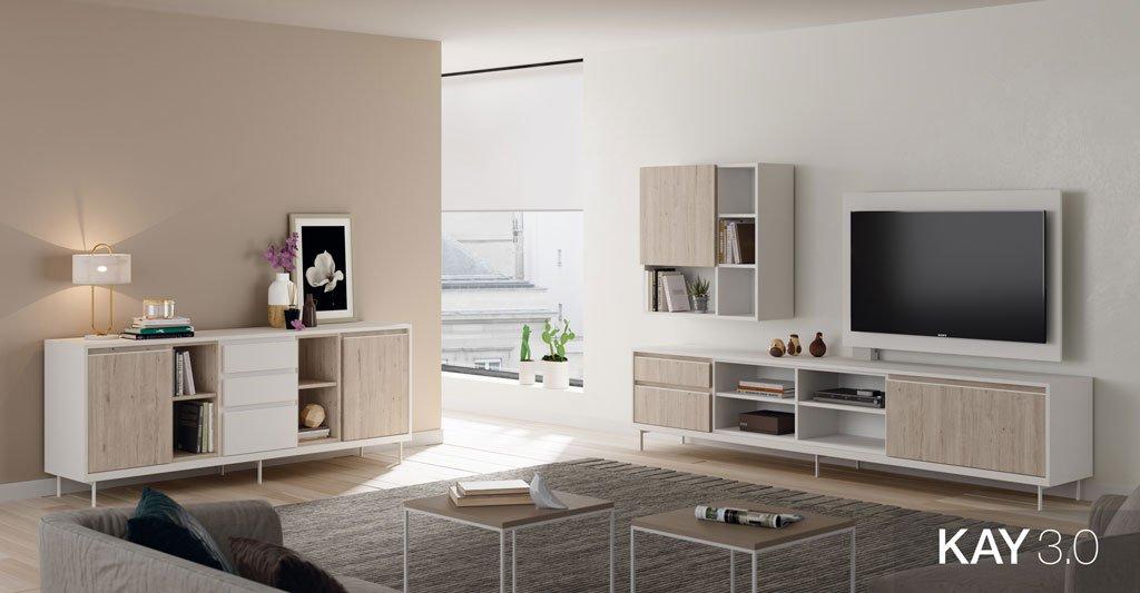 Composición de salón moderno con un mueble TV y un aparador bajo