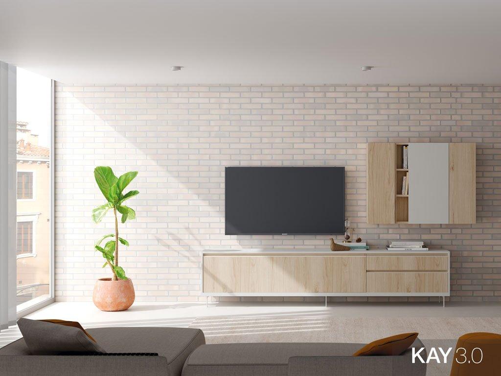 Composición de un salón moderno con un mueble TV más una estantería con puertas
