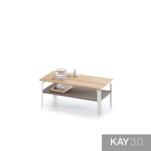 Mesa de centro con sobre y estante de madera modelo F